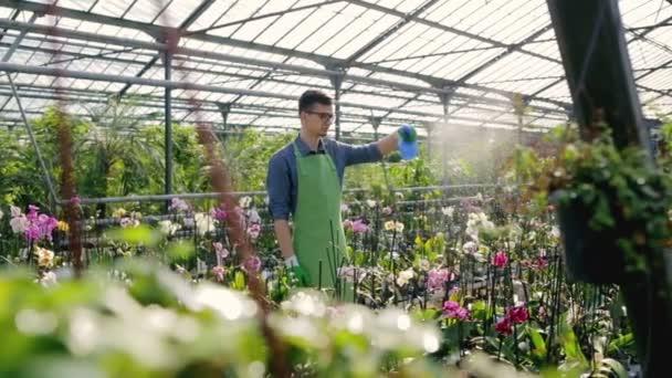 Muž, zalévání rostlin mimo skleníku. Zpomalený pohyb