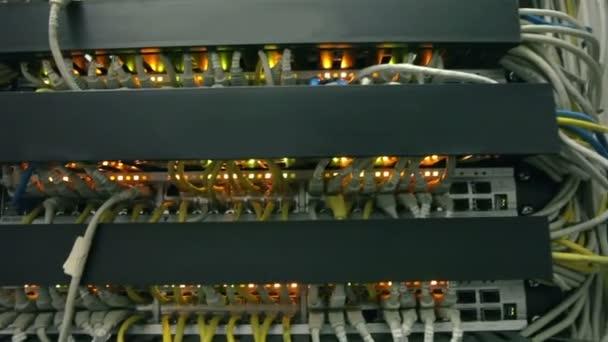 síťové kabely připojeny k přepínači