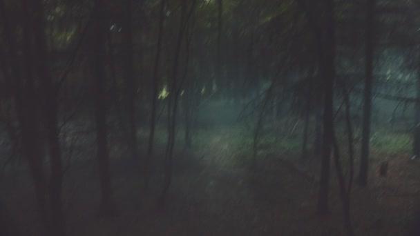 POV z očí létající zvíře, které sledují dva muži v lese. Mystic scénu z pohádky