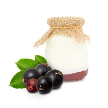 Elderberry yogurt