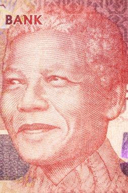 Nelson Mandela, Portrait on the bill