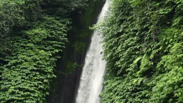 Waterfall in tropical forest in Bali