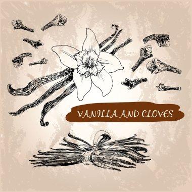 Vanilla and cloves
