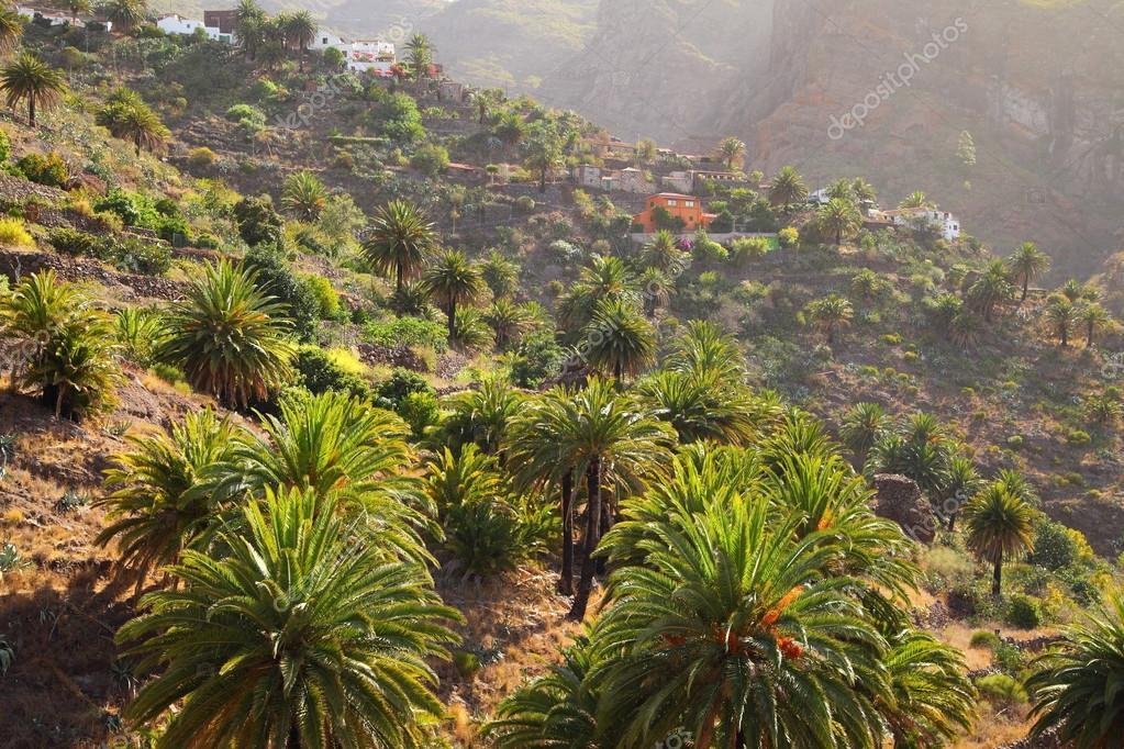 Masca village on the island of Tenerife