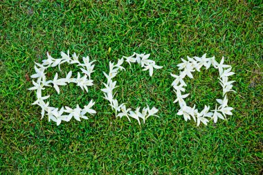 Flowers arranged as a word eco