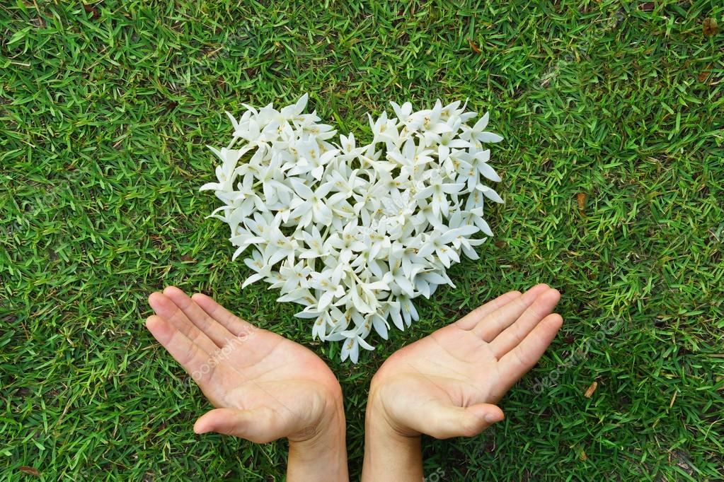Manos Con Flores En Forma De Corazón