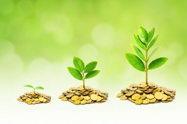 Ethical business growth with environmental concern
