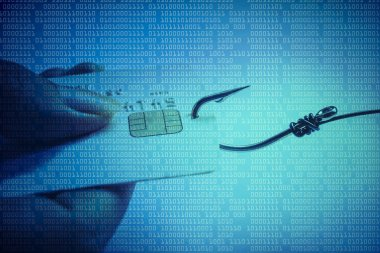 Phishing attack on credit card data