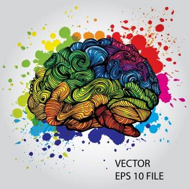 Doodles about brain