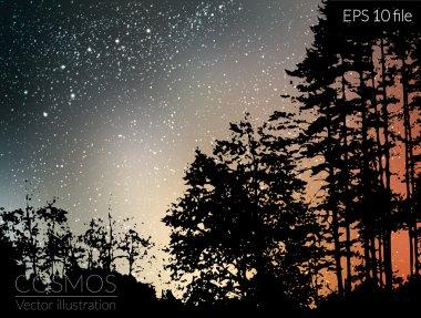 Sky night with stars