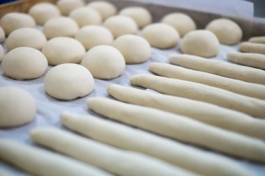 Freshly Made dough for Rolls and Frenchies