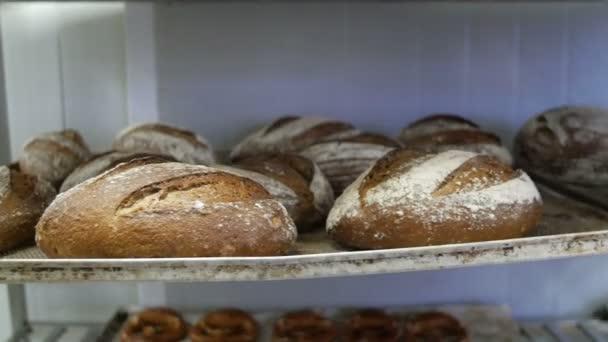 Freshly bread displayed on shelves