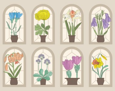 Vintage Style Flowers On Window Sills