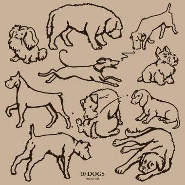 Set of ten hand drawn dogs
