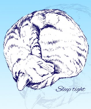 Sketch of a Sleeping Home Cat