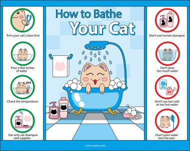 How  to Bathe Your Cat vector graphic guide