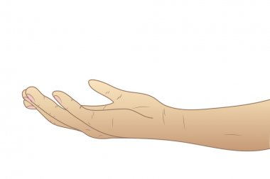 The hand given palm up