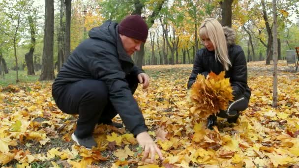 Cheerful man and woman are sitting on dry yellow leaves and collecting yellow autumn leaves, in the autumn park