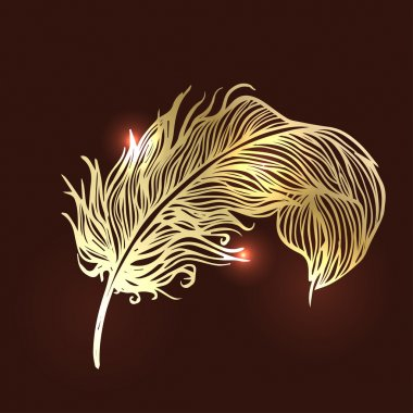 Shiny gold feather over dark background.