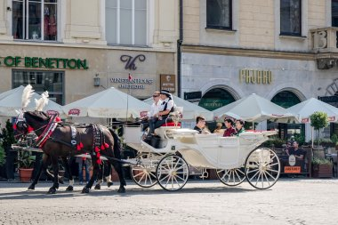 Carriage and horses in Krakow