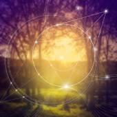 Posvátné geometrie. Matematika, příroda a spiritualita v přírodě. Vzorec přírody. Je bez začátku a bez konce vesmíru, a bez začátku a bez konce života