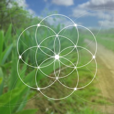 Flower of life - the interlocking circles ancient symbol. Sacred geometry. Mathematics, nature, and spirituality in nature. Fibonacci row. The formula of nature. Self-knowledge in meditation.