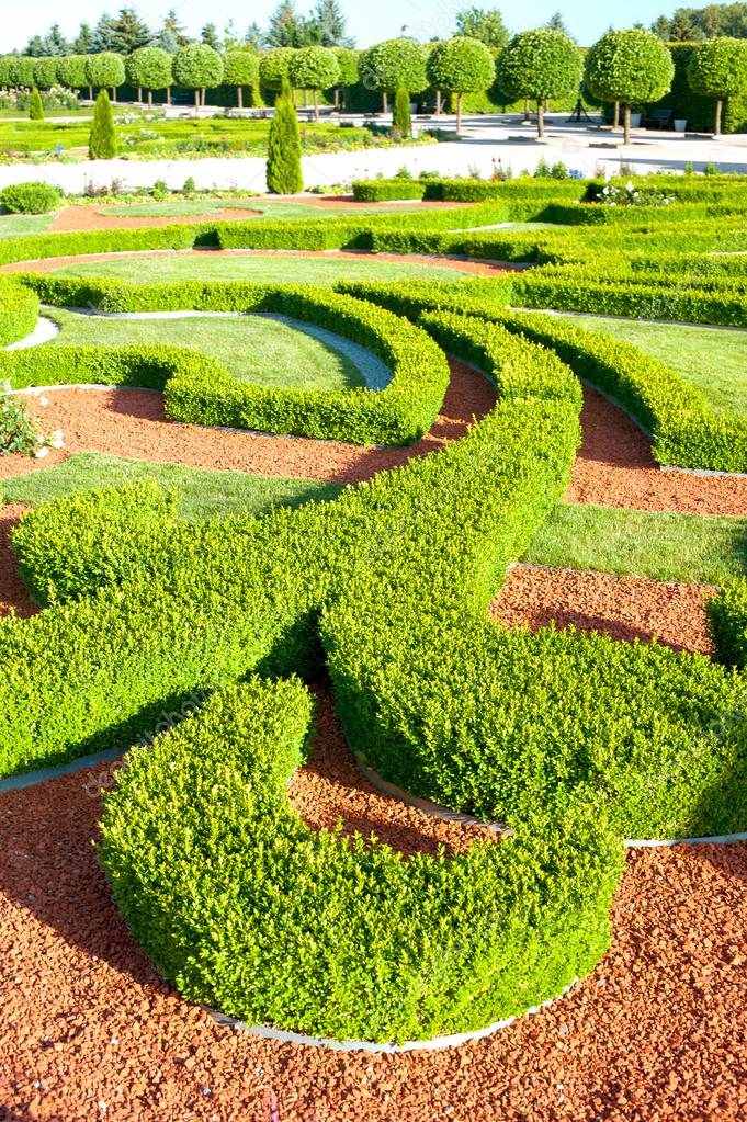Boxwood bushes of ornamental garden. Rundale royal in Latvia.