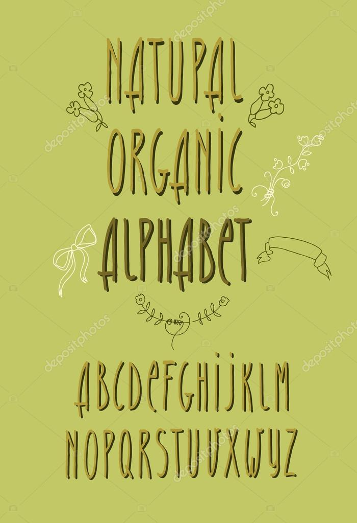 decorative vector alphabet and floral elements