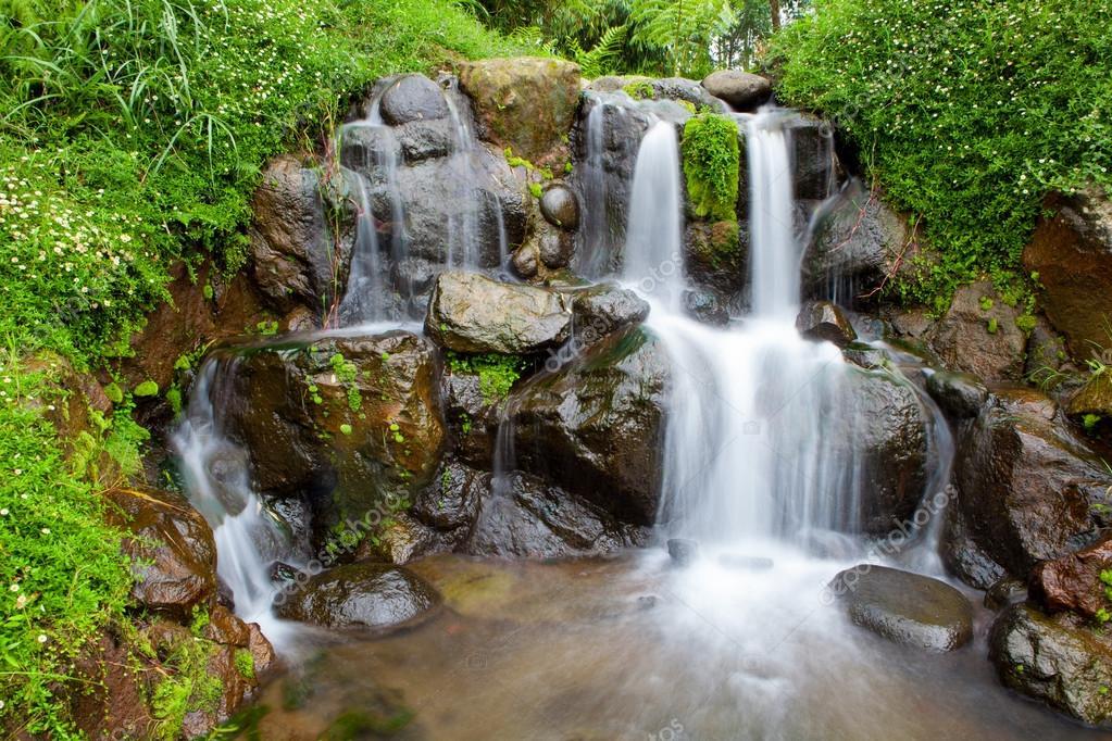 Jardin de la nature avec une petite chute d 39 eau de cascade for Cascade d eau jardin