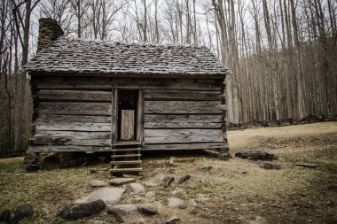 Pioneer Cabin In The Smoky Mountains National Park