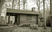 Fotografie Blockhaus im Wald
