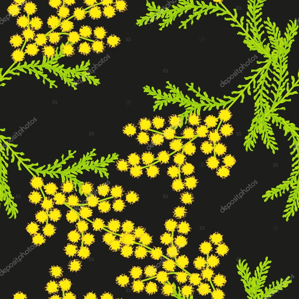 Seamless pattern with flowers of mimosa on a black background. Vector eps 10.
