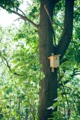 a fa birdhouse