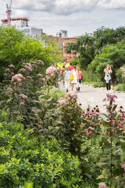 NEW YORK CITY - JULY 29,2014: People walking in High Line Park i