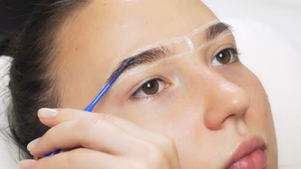 Ein Profi färbt in einem Schönheitssalon die Augenbrauen mit Farbstoffen, Farbtönen und kosmetischen Eingriffen. Farbe wird mit einem dünnen Pinsel auf die Haare aufgetragen.