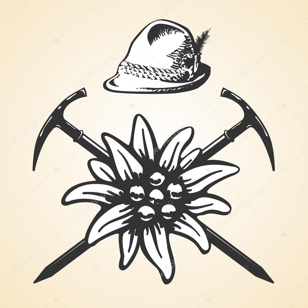 Conjunto de plumas de los sombrero de estilo del Tirol vintage de  oktoberfest Edelweiss alpino — Vector de game gfx f99ea429e455