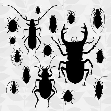 Contrast set with silhouette of bugs.