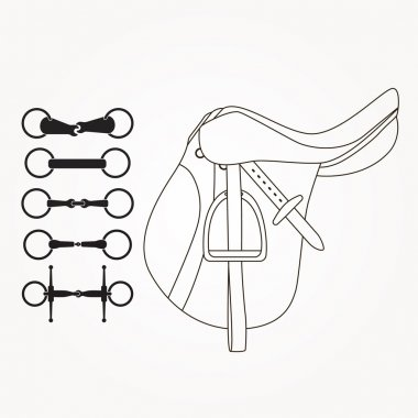 Horseback riding elements - saddle and different types of bits or snaffles