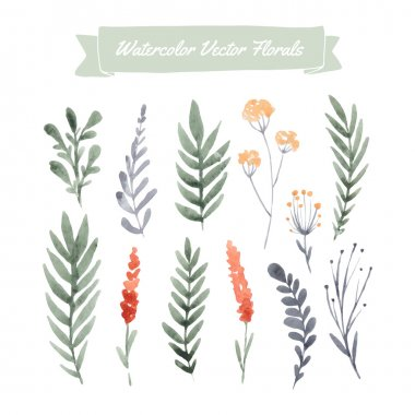 Set of handpainted watercolor vector flowers and leaves. Design element for summer wedding, spring congratulation card. Perfect floral elements for save the date card. Unique artwork for your design. clip art vector