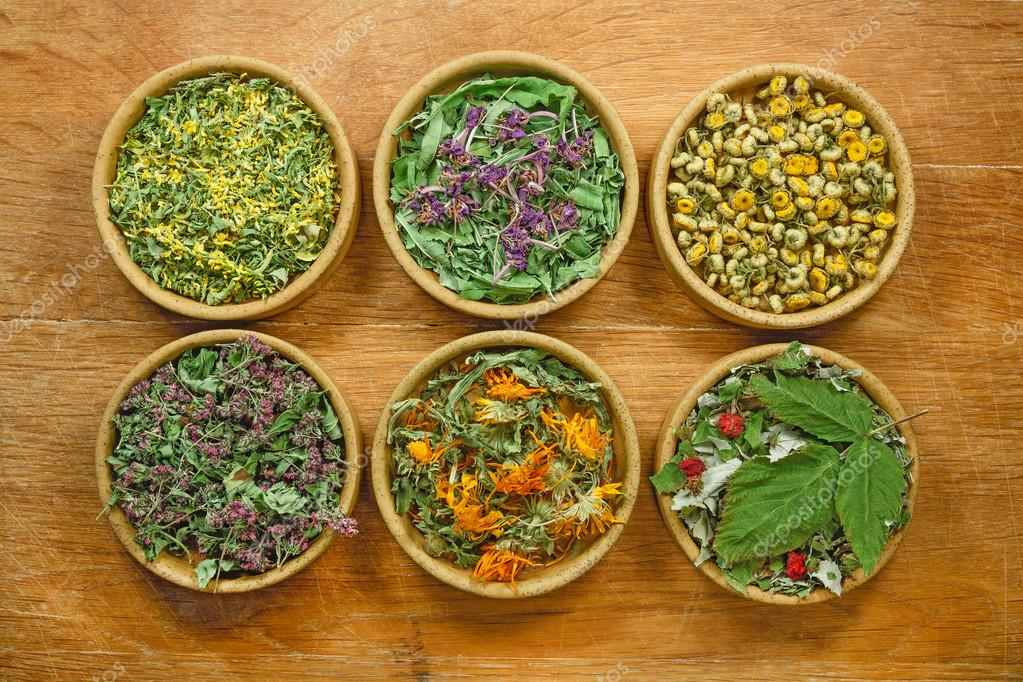 Dried herbs. Herbal medicine, phytotherapy medicinal herbs.