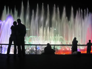 Couples admire the fountain.