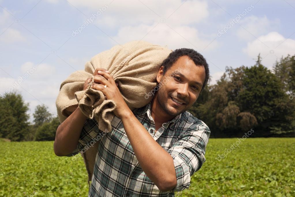 Brazilian coffee farmer at coffee plantation