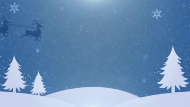 Veselé Vánoce a šťastný nový rok