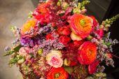 Fotografie krásné květiny kytice