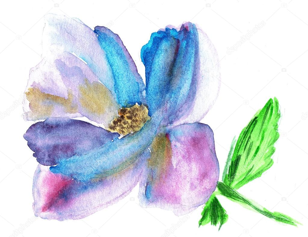 Illustration Aquarelle De Fleurs Stylisées Illustration De