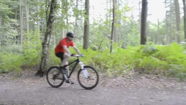 Cyklista na koni horské kolo na trati lesní