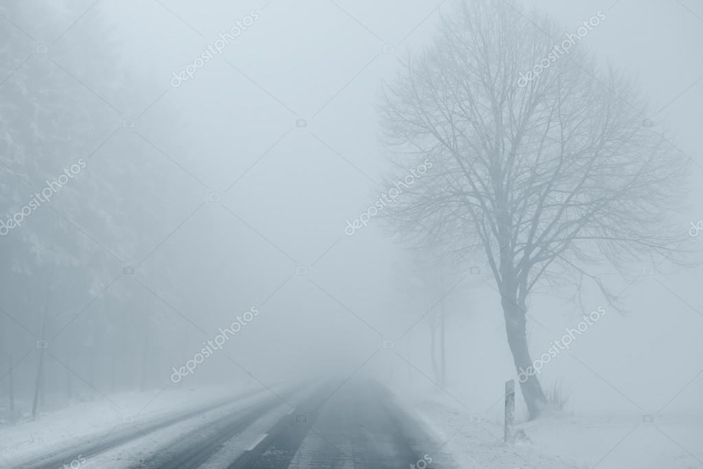 Foggy Winter Road