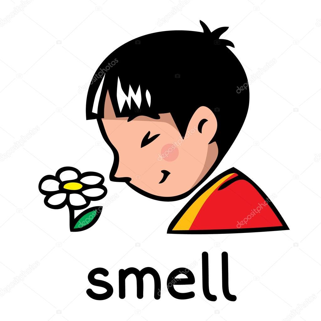Dibujos Del Sentido Del Olfato Icono Del Sentido Del Olfato