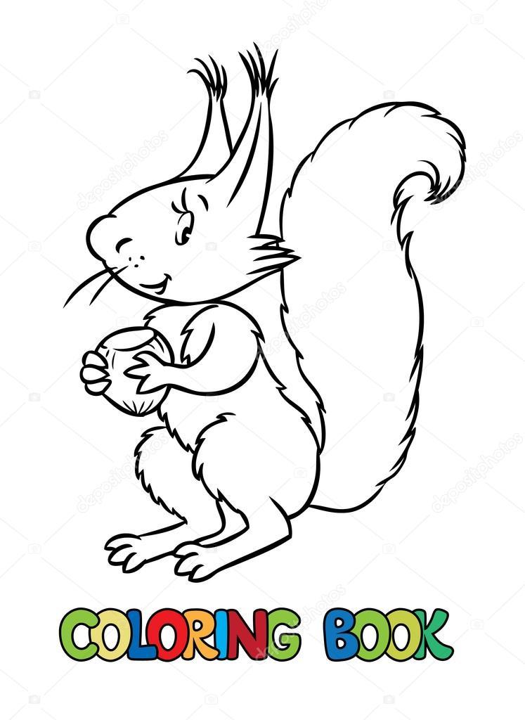 Libro de lttle divertida ardilla para colorear — Vector de stock ...