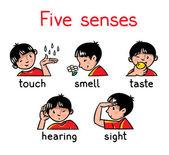 Sada ikon pět smyslů